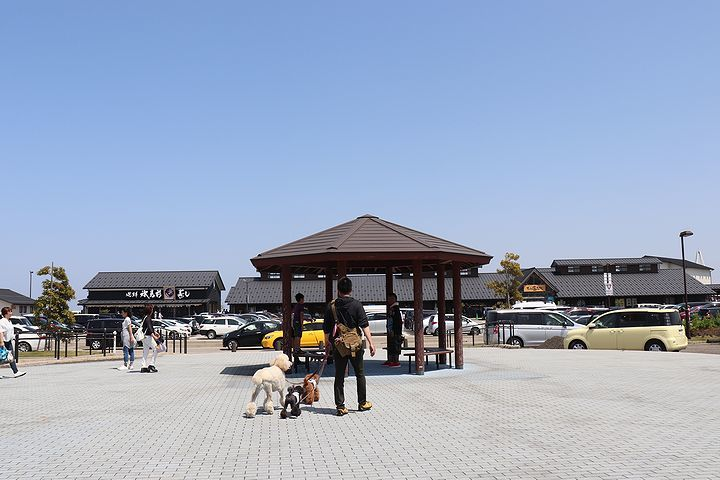 富山湾の幸を食いまくり!_b0111376_21033200.jpg