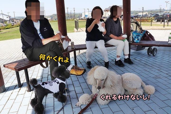 富山湾の幸を食いまくり!_b0111376_21280984.jpg