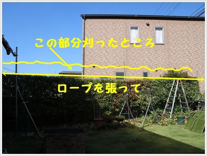 b0175688_20294462.jpg