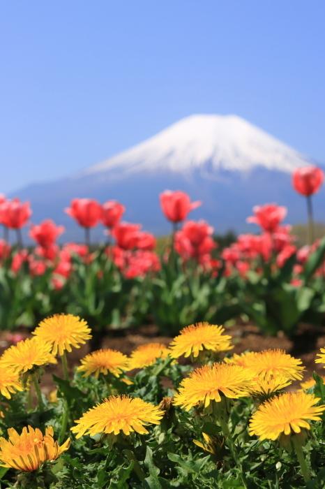 【花の都公園】_f0348831_01434146.jpg