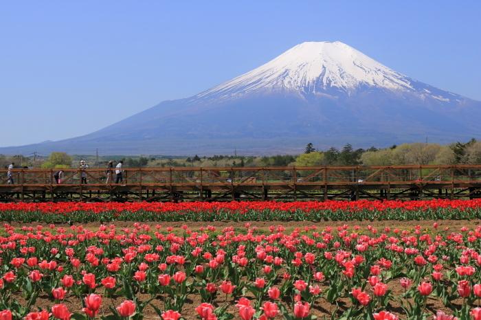 【花の都公園】_f0348831_01460747.jpg