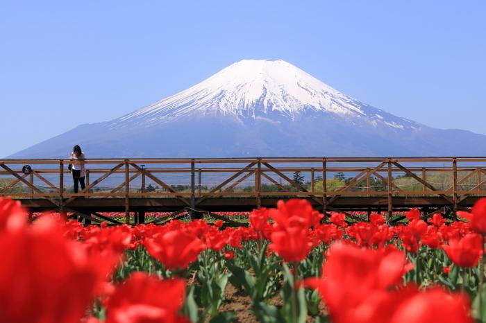 【花の都公園】_f0348831_01461088.jpg