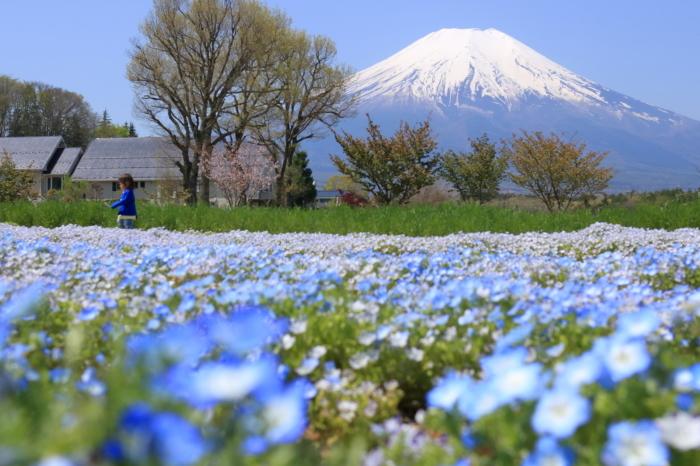 【花の都公園】_f0348831_01461680.jpg
