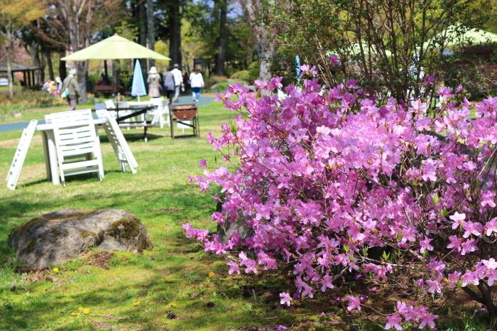 【花の都公園】_f0348831_01464135.jpg