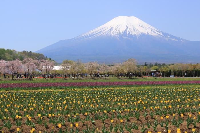 【花の都公園】_f0348831_01465644.jpg
