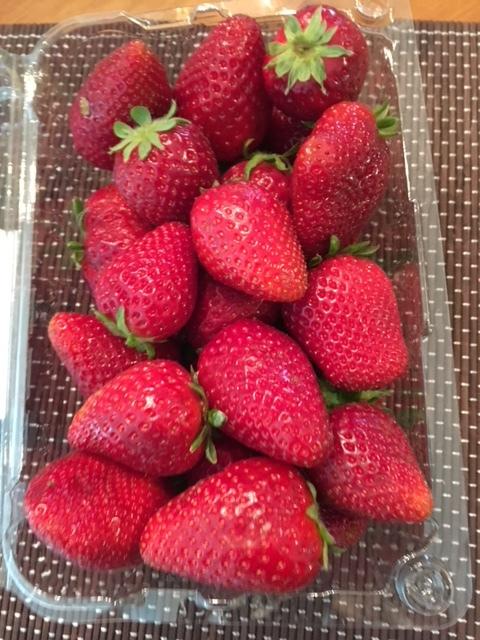 イチゴの直売店_e0350971_10180470.jpg