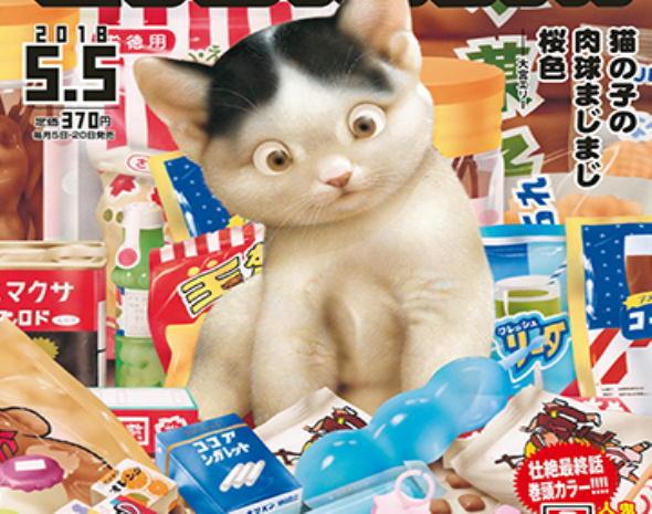 「 猫の子の 肉球まじまじ 桜色 」大宮 エリー_c0328479_13094664.jpg