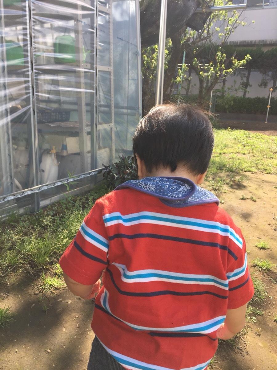 ☆温心農場へようこそ☆_f0170586_18264083.jpg