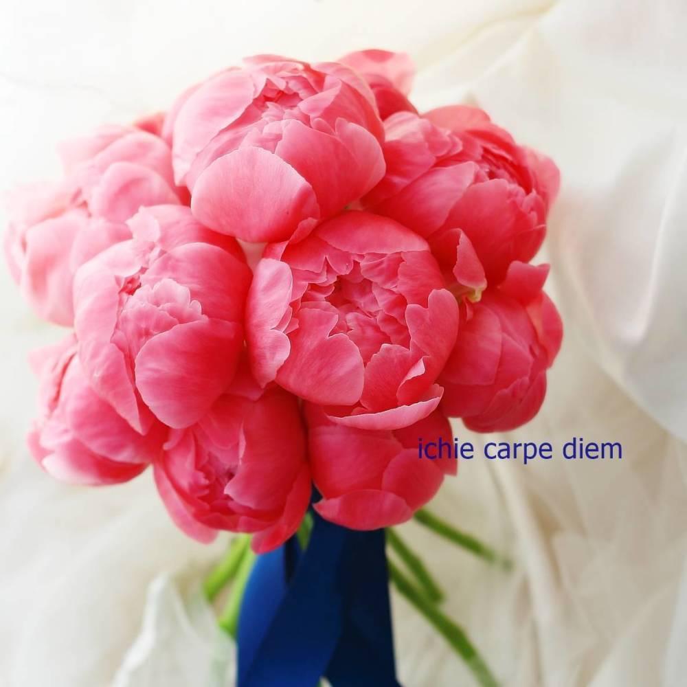 クラッチブーケ 芍薬コーラルピンクに紺色のリボンで_a0042928_13091557.jpg