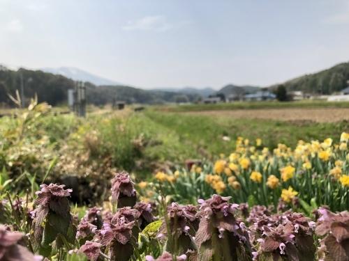 花咲ツアー2018八戸〜盛岡編_e0071652_12111680.jpeg