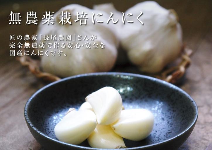 『無農薬栽培にんにく』 まもなく芽カギ作業です!_a0254656_17235124.jpg
