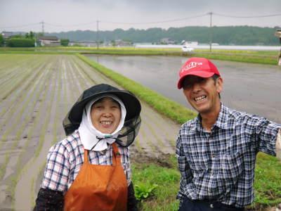 『無農薬栽培にんにく』 まもなく芽カギ作業です!_a0254656_17445168.jpg