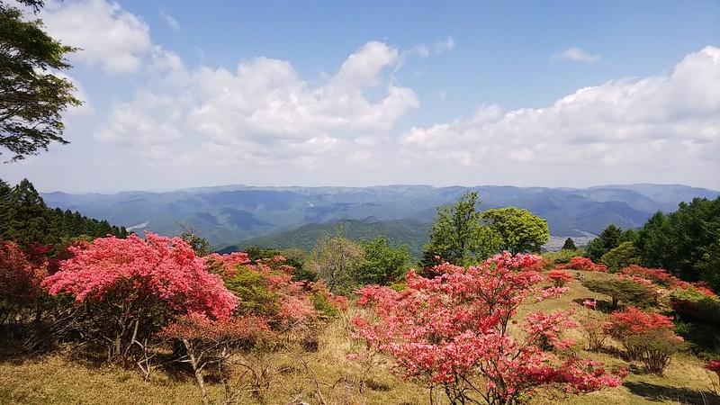 京都一周トレイル 北山東部コース_c0057390_05542145.jpg