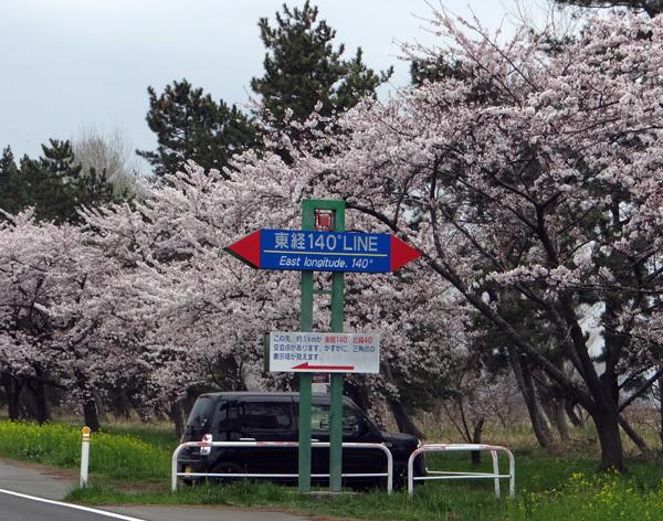 今年の桜ドライブは男鹿半島へ~~GAOも良かった~♪_a0136293_17092598.jpg