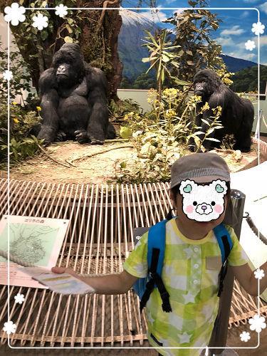 GW前半は王子動物園♪_f0108346_17373174.jpg