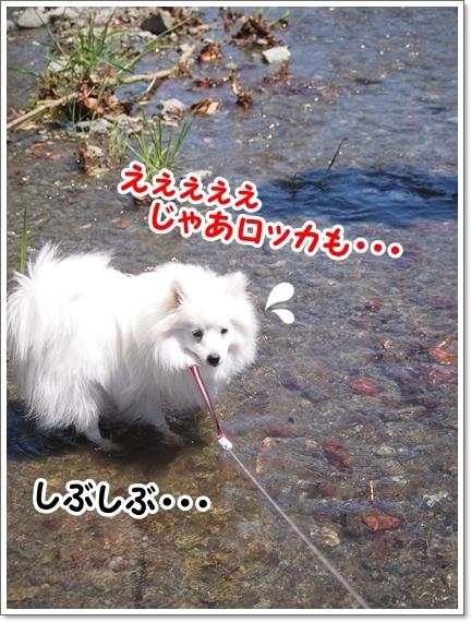 d0013149_00244300.jpg