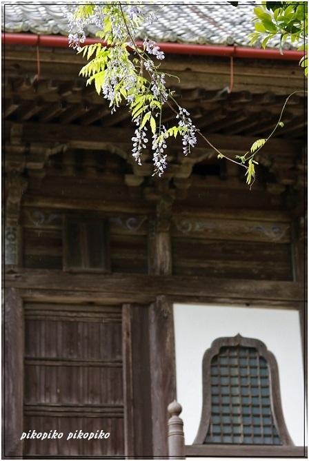 宝蔵寺  1_e0353681_23310680.jpg