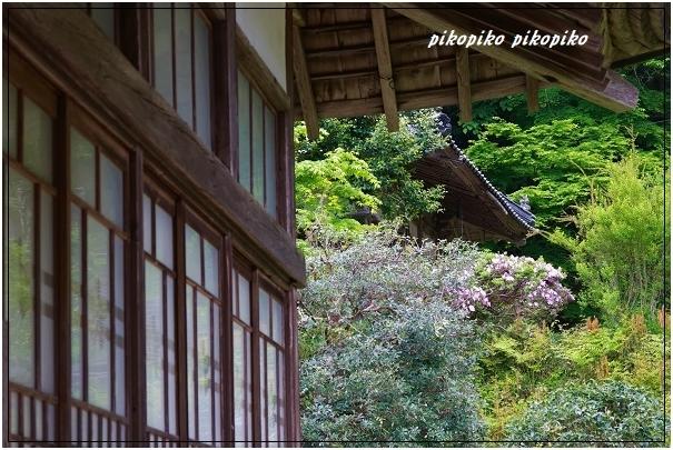 宝蔵寺  1_e0353681_23311481.jpg