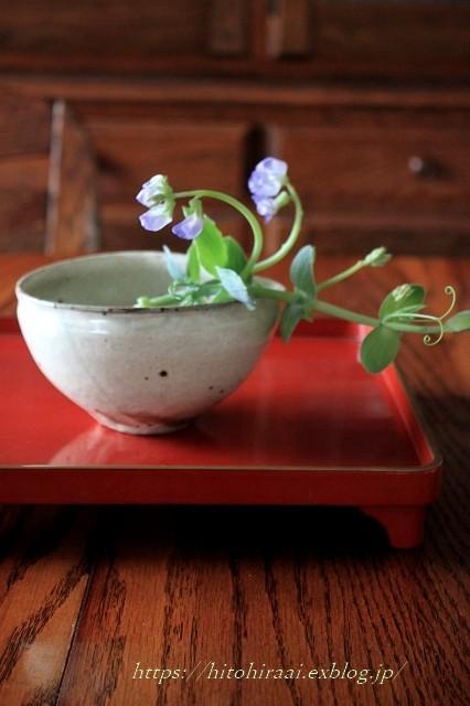 初夏の花を使ったアレンジメントと初夏のインテリア_f0374092_00514321.jpg