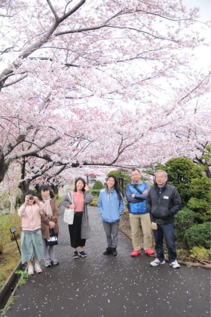 桜満開のGWでした!!_c0125899_16465039.jpg