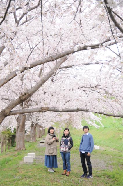 桜満開のGWでした!!_c0125899_16473836.jpg
