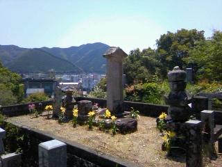 土佐の田舎でお墓参りをして来ました。_b0255217_13352793.jpg