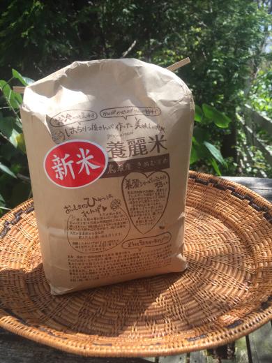 【マダ松の玄米革命❢】_f0215324_18171828.jpg