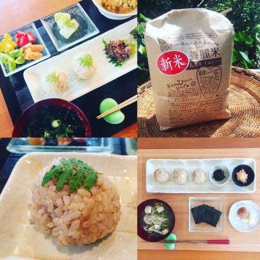 【マダ松の玄米革命❢】_f0215324_18193635.jpg