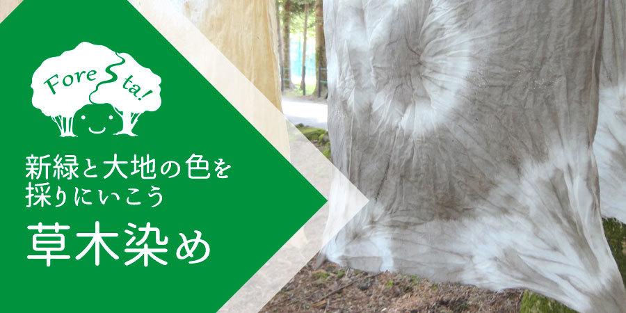 きたかるフォレスタ 〜ひかりの森の物語〜_b0174425_10373567.jpg