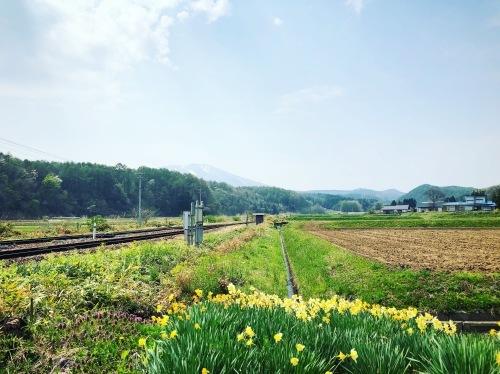 花咲ツアー、盛岡、一関編_e0071652_14313240.jpeg