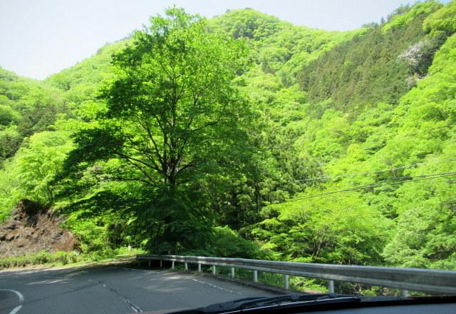 GW/新緑ドライブ * ①数年ぶりの夫婦岩_f0236260_23103823.jpg