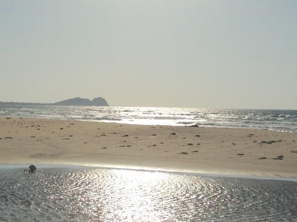 海の波・感情の波・気づきの波***_e0290872_21335259.jpg