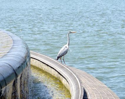 還水公園_b0057679_09072462.jpg