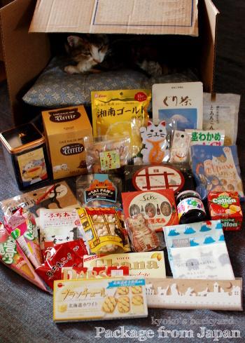 猫グッズ満載の箱根便♪_b0253205_02202894.jpg