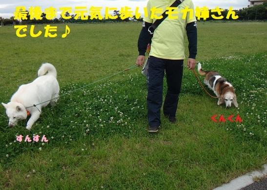 f0121712_01213234.jpg