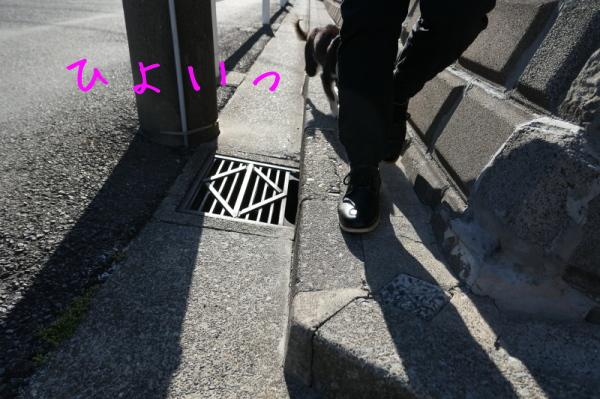 f0369014_19263669.jpg