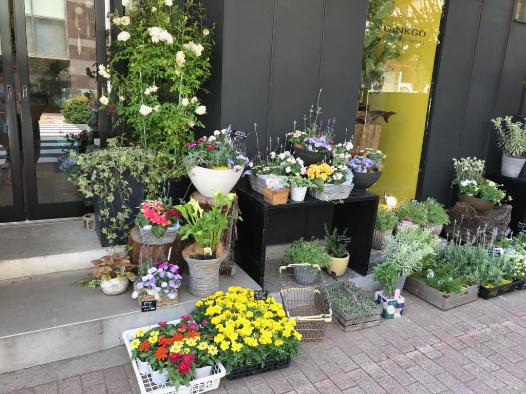 花盛り!母の日のお花♬_a0060141_7192670.jpg