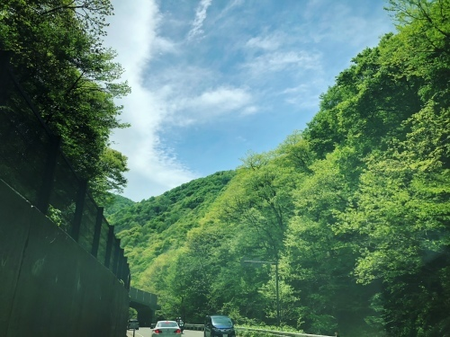 ブログを更新しました『花咲ツアー2018、新庄〜仙台編』_e0071652_16090542.jpg