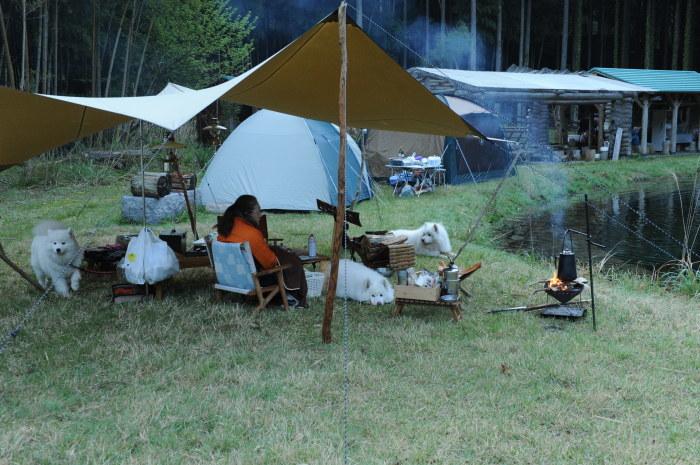 久しぶりのお気に入りキャンプ場 2_a0049296_18374792.jpg