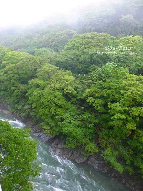 新緑の水上温泉の旅-その2_d0128697_2551342.jpg