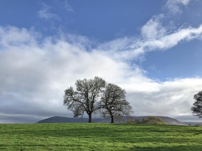 アイルランドの風_d0116009_09584961.jpg