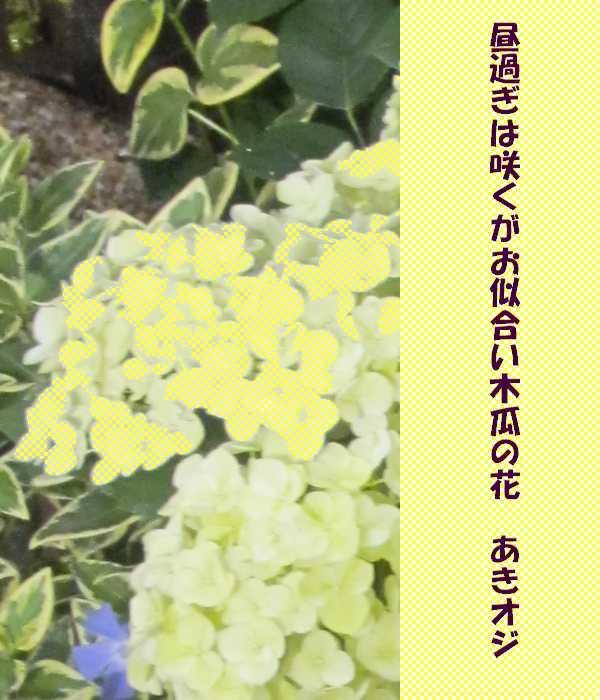 f0117041_05391897.jpg