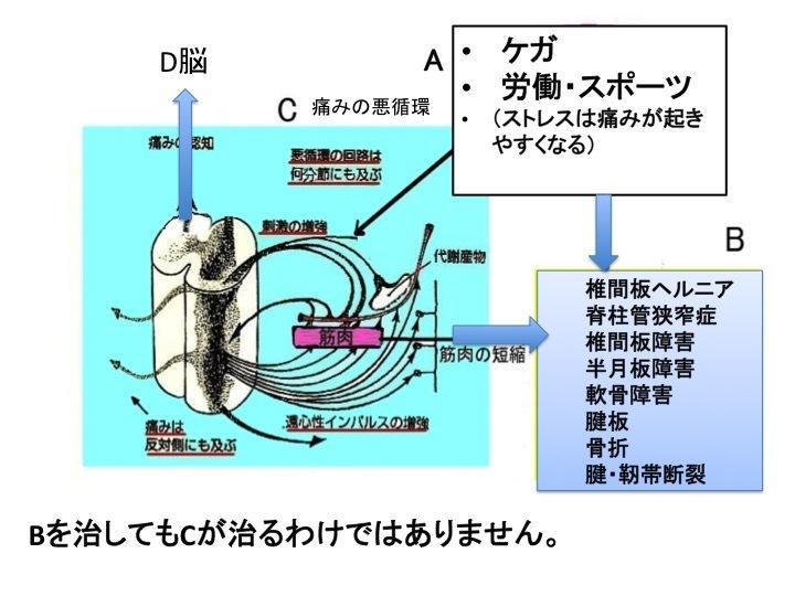 b0052170_20330078.jpg