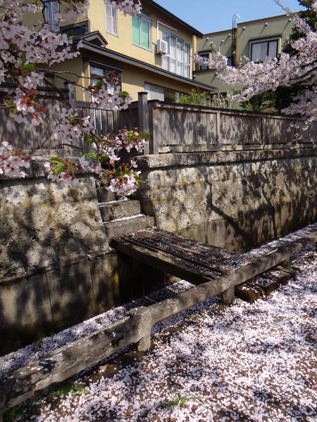 遅くなったけど(^^; 桜のトンネル弘前公園西堀ほかいろいろ^^_a0136293_19153002.jpg