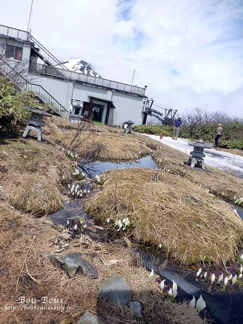 新緑の水上温泉の旅-その3  ラスト_d0128697_2213872.jpg