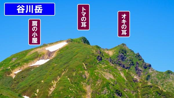 新緑の水上温泉の旅-その3  ラスト_d0128697_243457.jpg