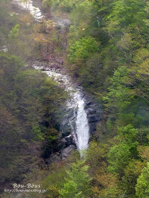 新緑の水上温泉の旅-その3  ラスト_d0128697_254580.jpg