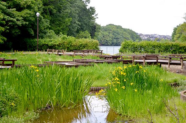 淡彩風景画講座・5月のテーマ「公園を描く」ご紹介_b0212226_11585723.jpg