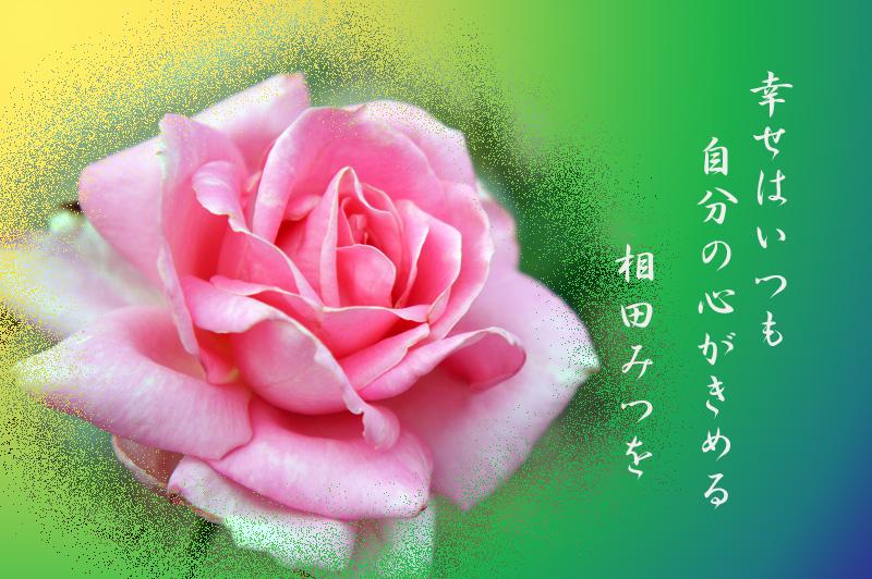 f0047824_1674423.jpg