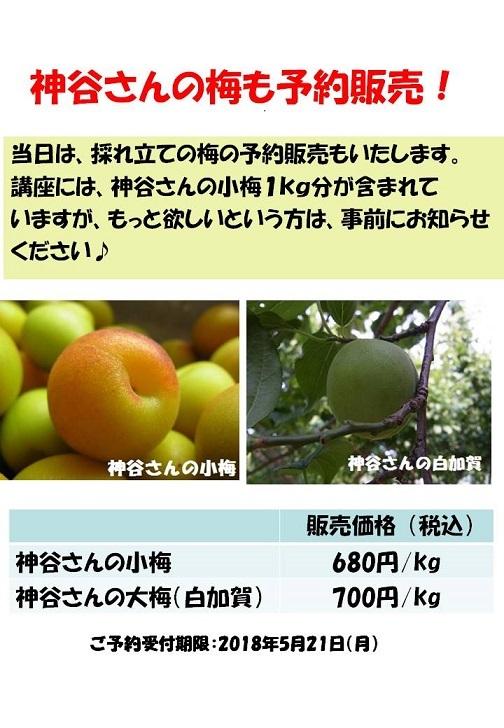 b0244034_18350326.jpg